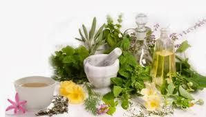 Imagini pentru plante medicinale