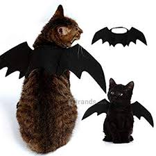 <b>Costume Halloween Pet Bat</b> Wings Cat Bat Costume: Amazon.in ...