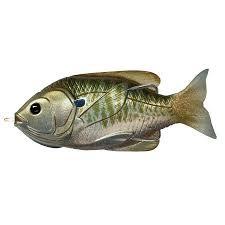 LiveTarget Sunfish Hollow Body Freshwater, 4 inch Length, 3/4 oz ...