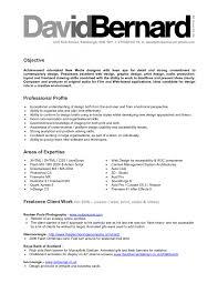 mesmerizing resume examples graphic design brefash resume cover letters graphic design careerperfectr volumetrics co resume samples graphic designer position resume summary examples