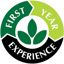 the first year experience mvcc mohawk valley community college the first year experience office is here to support new students and their families other supporters as they make the transition to college