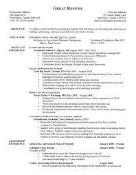 day trader resume sample trader resume resume template stock day trader resume day trader resume