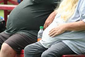 Resultado de imagen de obesity
