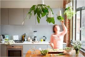 Small Picture Small Herb Garden Ideas crosscreekfarmus