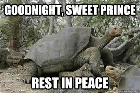 Goodnight, Sweet prince Rest in peace - Lonesome George - quickmeme via Relatably.com