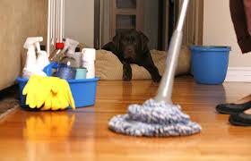 شركة المثالية لتنظيف المنازل ببقيق Images?q=tbn:ANd9GcRZtZHWTXd1vJTNJQgX2LxOqOWGFSen84_I0U54tQgvGw3zMH5amA