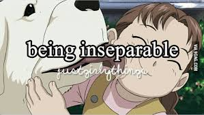 Inseparable | Fullmetal Alchemist | Know Your Meme via Relatably.com