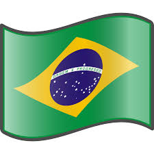 Image result for Brazilian Flags