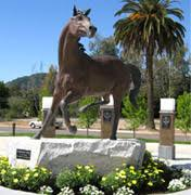preparing for the writing proficiency exam  wpe    writing    cal poly mustang statue