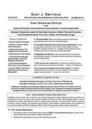 Resume Writing Austin Tx   Resume Summary Statement Examples