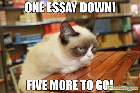 one essay down five more to go meme   grumpy cat table   one essay down five more to go meme   grumpy cat table