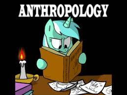 relationship between sociology and anthropology essay anthropology