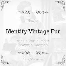 How to Identify Vintage Mink, <b>Fox</b>, <b>Rabbit</b>, Beaver & <b>Raccoon</b> Furs