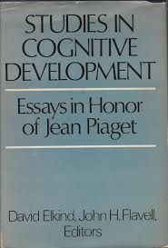 piaget essay cognitive development individual development and change true vision individual development and change true vision