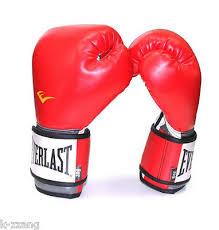 EVERLAST <b>Boxing</b> Glove Prostyle training gloves <b>MMA Muaythai</b> ...
