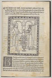art and love in the italian renaissance essay heilbrunn hystoria di due amanti tale of two lovers