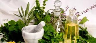 Картинки по запросу картинки лекарственные растения