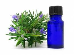 Image result for therapeutic oils for relief