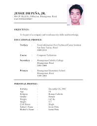 example resume formats resume examples  a