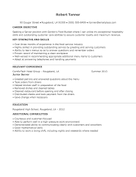 server resumes for resume template info server resume server resume skills by robert tanner