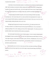cultural essay examples pevita cover letter cultural essay examples cultural relativism essay