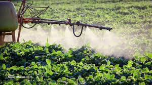 Image result for African farmers urged to avoid the usage of pesticides on their crops