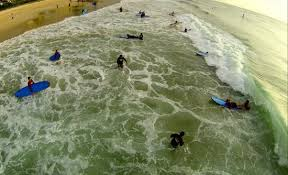 Image result for anglesea surfing kids