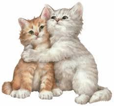 """Résultat de recherche d'images pour """"gif chat"""""""