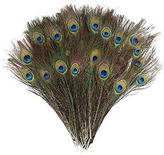 DECORA 100 Pieces Real Natural Peacock Feathers ... - Amazon.com