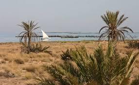 """Résultat de recherche d'images pour """"Archipel de Kerkennah - Sfax (Tunisie)"""""""