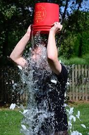 Online Activism - Ice Bucket Challenge
