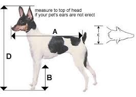 <b>Pet</b> Cargo Crates - How to Measure Your <b>Pet</b> | PetTravelStore.com