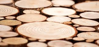 Panel dekoracyjny, panel drewniany - <b>Wood Collection</b>