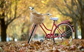 Resultado de imagen de imagenes de bicicletas