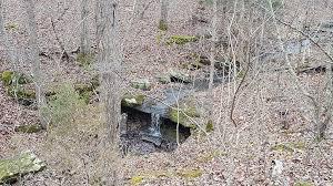 Paddy Creek Wilderness