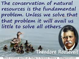 conservation quotes    quotes on conservation science quotes  theodore roosevelt quote the conservation of natural resources is the fundamental problem  ducks
