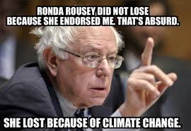 Image result for bernie sanders crazed
