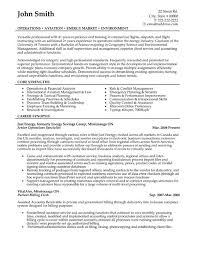 business operations analyst resumes   Template