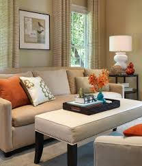 living room accessoriesravishing orange living room