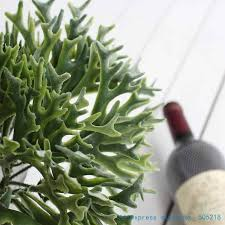 <b>1 PCS Beautiful Artificial</b> Soft Plastic Staghorn fern Bouquet ...