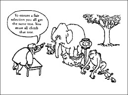 cartoon of different animals being asked to climb a tree as a test