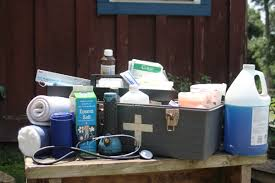 <b>Equine</b> First-Aid Essentials - Expert how-to for English Riders