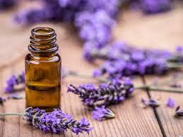 14 Benefits and Uses for <b>Tea Tree Oil</b>