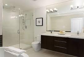 idea transitional bathroom vanity