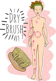 Image result for dry brushing