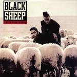 Try Counting Sheep by Black Sheep