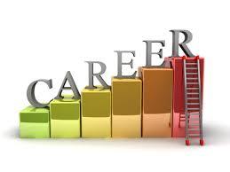 career software software solution bbsr web design career