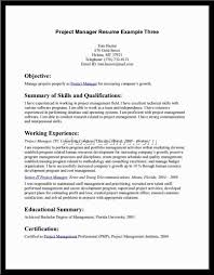 a good resume example for customer service professional resume a good resume example for customer service customer service resume example sample resume job resume