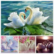 Popular <b>Swan</b> Diamond-Buy Cheap <b>Swan</b> Diamond lots from China ...