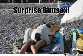 Surprise Memes. Best Collection of Funny Surprise Pictures via Relatably.com